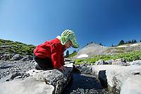 Girl hiker stoops to look into creek crossing Mazama Ridge Trail, Mount Rainier National Park, Washington, USA
