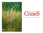 Incredible crane images by international award-winning photographer Michael Knapstein. Some of these images have received awards from National Geographic, The Nature Conservancy, Wisconsin DNR and Wisconsin Trails Magazine
