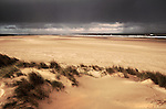 Sand dunes on Holkham beach, north Norfolk coast