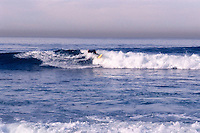 SURF &amp; SURFERS ALONG CALIFORNIA COAST<br /> Near San Diego<br /> Surfing is a surface water sport in which the participant is carried along the face of a breaking wave, most commonly using a surfboard.