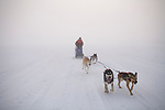 Kenneth Jarecke: Sled Dog Rescue