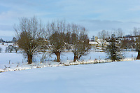 Church and snowy fields by the River Windrush in the village Swinbrook, The Cotswolds, UK