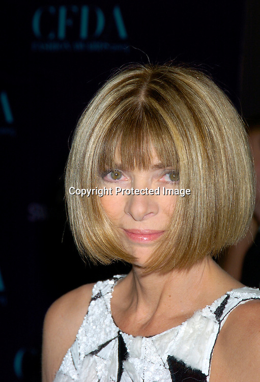 Anna Wintour..at the  2004 CFDA Fashion Awards on June 7, 2004 at ..The New York Public Library.                                           Photo by Robin Platzer, Twin Images