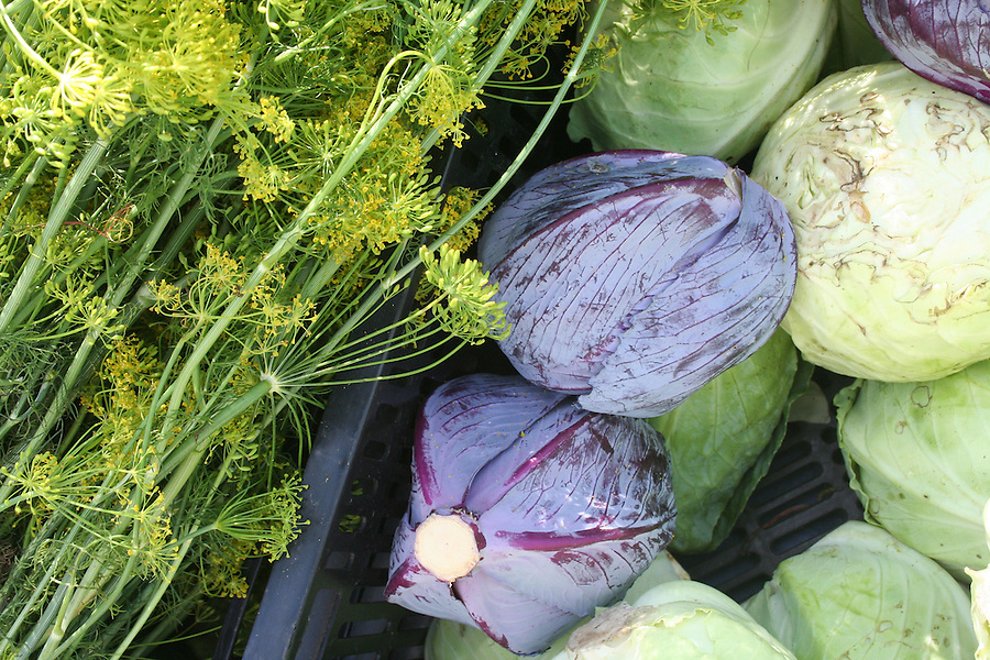 Fresh cabbage and herbs at market