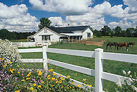 Fancy barn with grazing horses in pasture, Missouri USA