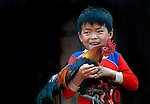 A boy in Sainyabuli province, Laos with his pet chicken used to ensnare the wild chickens.