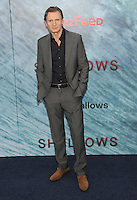 """NEW YORK, NY - June 21: Liam Neeson attends the New York premiere for """"The Shallows"""" at the Loews AMC on June 21, 2016 in New York City . Credit: John Palmer/ MediaPunch"""