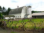 Dahmen Barn with Wagonwheel fence, Uniontown, Washinigton