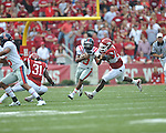 at Reynolds Razorback Stadium in Fayetteville, Ark. on Saturday, October 23, 2010.