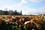 26th November - Autumn in Burghley Park