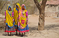 Traditional Women from the Thar Desert, On the road to Jaiselmer from Pushkar Rajasthan