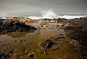 OR01209-00...OREGON - Pounding surf at the Cape Perpetua Scenic Area on the Pacific Coast in the Siuslaw National Forest.