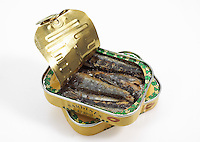 Opened can of Sardines.