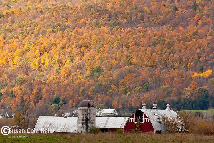 Fall foliage in Weybridge, VT, USA