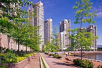 Yaletown, Vancouver, BC, British Columbia, Canada - High Rise Apartment and Condominium Buildings at False Creek, Downtown City, Summer