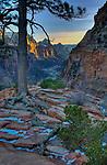 Sunset from Angel's Landing in Zion National Park Utah