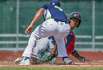 8 July 2014: Lowell Spinners infielder Raymel Flores is out sliding home during game action against the Vermont Lake Monsters at Centennial Field in Burlington, Vermont. The Lake Monsters rallied in the 9th inning to defeat the Spinners 5-4 in NY Penn League action. Mandatory Credit: Ed Wolfstein Photo *** RAW Image File Available ****