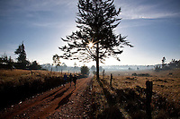 Kenyan runners on a dirt road in Iten, kenya