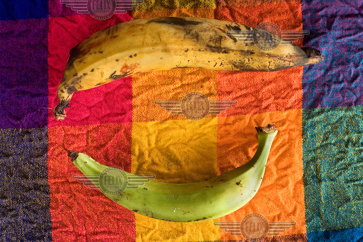 Different types of bananas rest on a colorful cloth in San Miguel, an Afro Ecuadorian community located three hours up the Cayapas River in the province of Esmeraldas.