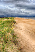 Approaching storm over sea oats on a Cape Hatteras beach.