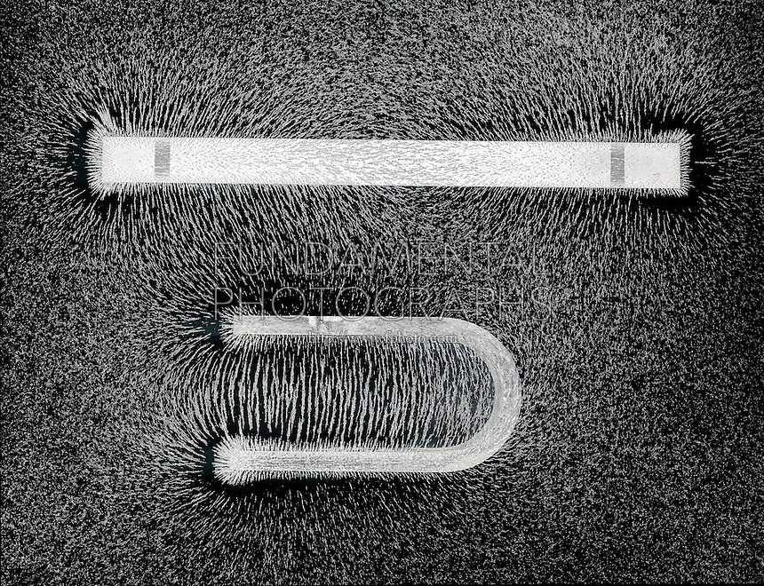 MAGNETIC FIELD OF BAR AND HORSESHOE MAGNETS<br />