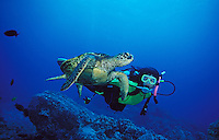 mx22. Green Sea Turtle (Chelonia mydas) interacts with scuba diver (model released). Hawaii, USA, Pacific Ocean..Photo Copyright © Brandon Cole. All rights reserved worldwide.  www.brandoncole.com..This photo is NOT free. It is NOT in the public domain. This photo is a Copyrighted Work, registered with the US Copyright Office. .Rights to reproduction of photograph granted only upon payment in full of agreed upon licensing fee. Any use of this photo prior to such payment is an infringement of copyright and punishable by fines up to  $150,000 USD...Brandon Cole.MARINE PHOTOGRAPHY.http://www.brandoncole.com.email: brandoncole@msn.com.4917 N. Boeing Rd..Spokane Valley, WA  99206  USA.tel: 509-535-3489