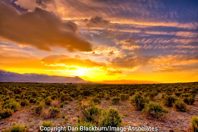 Dan Blackburn Scenic & Landscape Photos