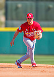 4 March 2016: St. Louis Cardinals infielder Aledmys Diaz warms up prior to a Spring Training pre-season game against the Houston Astros at Osceola County Stadium in Kissimmee, Florida. The Cardinals fell to the Astros 6-3 in Grapefruit League play. Mandatory Credit: Ed Wolfstein Photo *** RAW (NEF) Image File Available ***