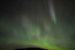 The Northern Lights light in an autumn sky in B.C.'s Cariboo country near Wells, B.C.