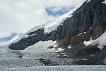 Athabasca glacier flowing over the mountain at the Icefields in Jasper National Park