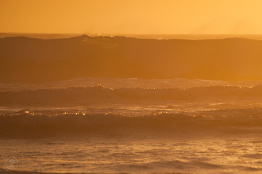 Evening light turns orange, and bathes the surf at Little Dip Conservation Park a golden orange colour. Summer, and the waves are high behind the reef and the air is warm and full of salt.