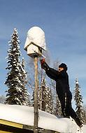 Talkeetna, Alaska, U.S.A, January 1989. A sudden cold wave struck Alaska resulting to the temperature falling under 50 degrees Centigrade (58 degrees Fahrenheit). Jean Wallace feeding birds.