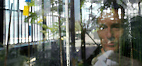 Plant History Glasshouse (formerly Australian Glasshouse), 1830s, Rohault de Fleury, Jardin des Plantes, Museum National d'Histoire Naturelle, Paris, France. Panoramic view showing the photographer, Manuel Cohen, reflected by the afternoon light in the glass and metal structure.