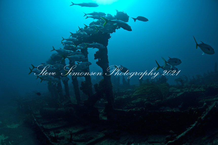 The Wreck of The RMS Rhone<br /> Sunk in a hurricane in 1867<br /> Salt Island<br /> British Virgin Islands