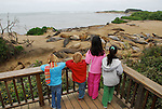Children and elephant seals at Ano Nuevo State Park