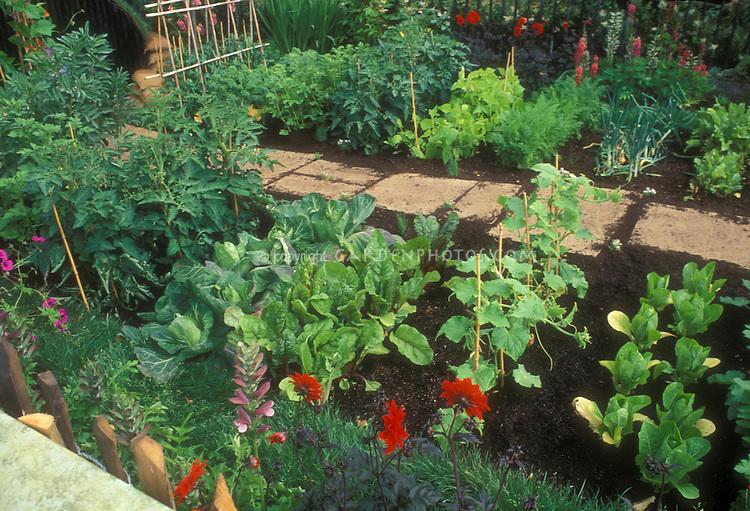 Backyard Edible Gardening Plant Flower Stock Photography