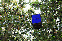 "Set four meters above the ground between trees, a hive floats in the air for this ""sky farmer."""
