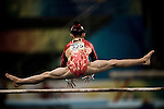 2008 Olympics in Chinese Photography