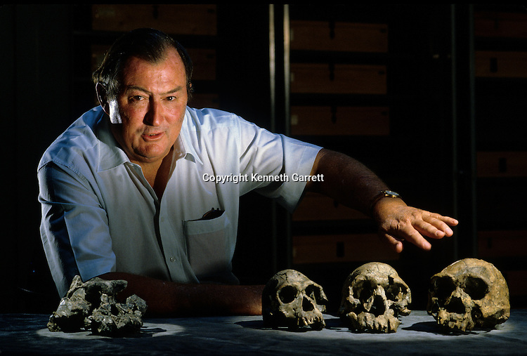 Richard Leakey with WT17000, KNMER 18, KNMER3733, KNMER 1470