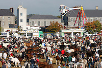 Ballinasloe Horse Fair. County Galway, Ireland.<br /> Every October, Ballinasloe is host to the ancient October Fair, one of the oldest horse fairs in Europe, bathed in history it dates back to the 1700s. Today the ever popular fair is still held, along with a festival that attracts up to 100,000 visitors from all over the world.<br /> Pictures James Horan