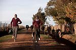 KENYA: RUNNERS IN ELDORET