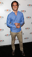 BEVERLY HILLS, CA, USA - MAY 06: Diego Boneta at The American Society For The Prevention Of Cruelty To Animals Celebrity Cocktail Party on May 6, 2014 in Beverly Hills, California, United States. (Photo by Celebrity Monitor)