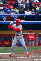 CALGARY, AL - Mike Piazza of the Albuquerque Dukes in action against the Calgary Cannons in Calgary, Canada in 1992. Photo by Brad Mangin