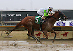 Parx Racing Stakes Races 2013