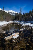 Mountain stream in Jasper National Park, Alberta.. 3328x4992