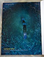 Parting shot in Scuba Diver Australasia