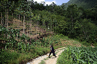 A woman walks along a mountain track. Many of the forested slopes in northern Sichuan have been converted into either maize fields (foreground) or to commercially grow traditional Chinese medicine (center left). Pingwu County in Sichuan Province, south-west China.