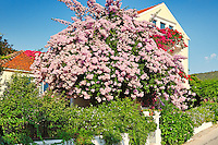 A house with flowers at the port of Fiskardo in Kefalonia island, Greece