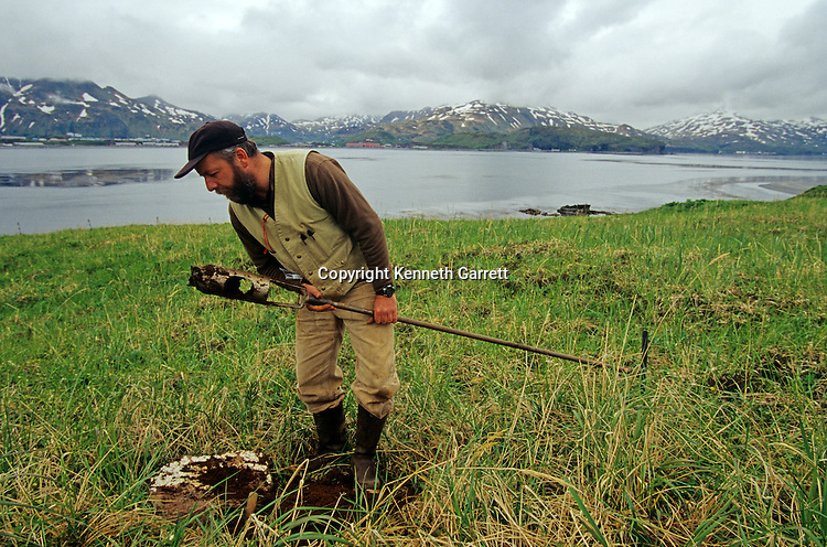 Rick Knecht; Alaska; Aleution Islands, excavation