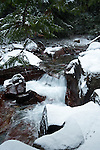 Winter snowfall on Avalanche Creek in Glacier National Park flowing over the red rock in the creek